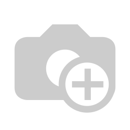 BLEED Basic T-Shirt Dunkelrot Flamé (BIO)